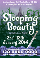 2014 - Sleeping Beauty